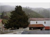 Villa del Sub