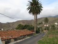 Alojera