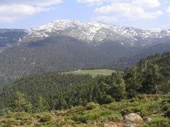 Alojamientos La sierra de Madrid