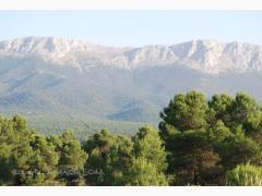 Alojamientos Parque Natural de Sierra María-Los Vélez
