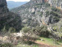 Alojamientos Sierra de Andújar