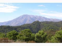 Alojamientos Sierra de las Nieves