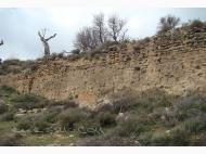 Ruinas de la fortaleza mozárabe Juviles