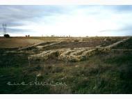 Yacimiento de Fuenteungrillo Villalba de los Alcores