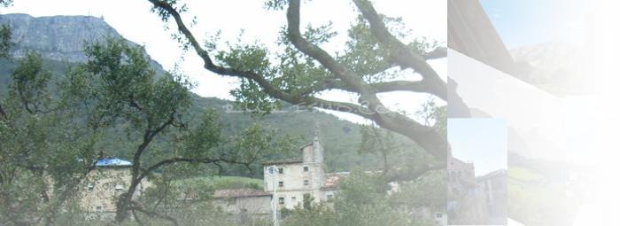 Foto de Tertanga