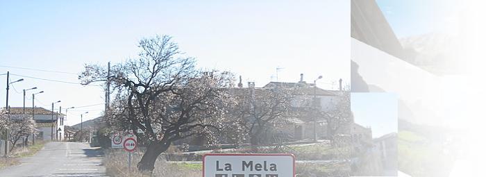 Foto de La Mela