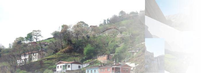 Foto de El Entrego