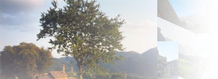 Foto de Borredà