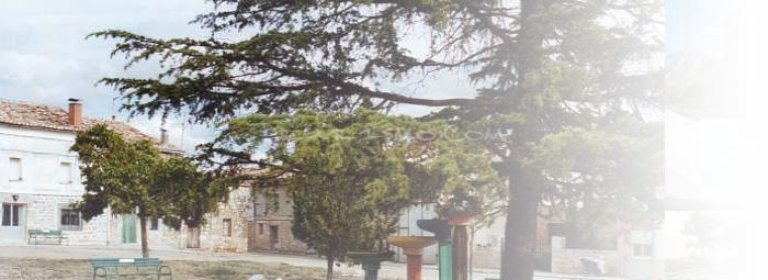 Foto de Arenillas de Villadiego