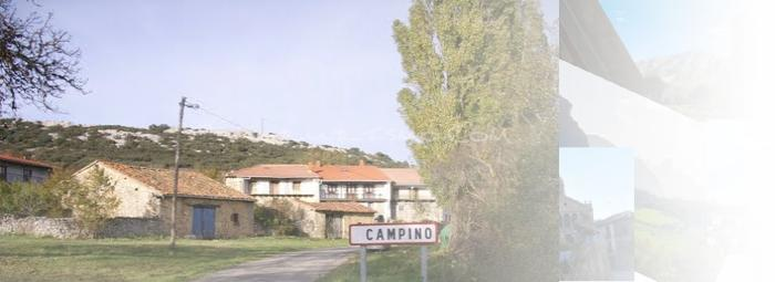 Foto de Campino