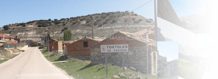 Foto de Tórtoles de Esgueva