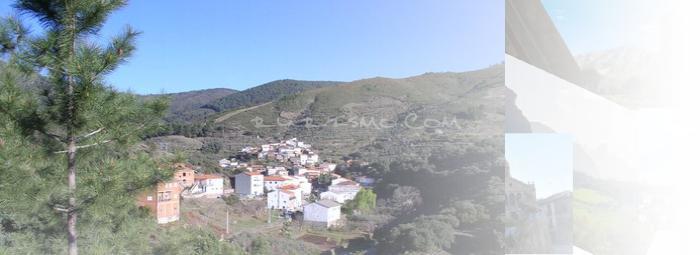 Foto de Ovejuela