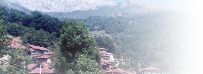 Foto de Salarzón