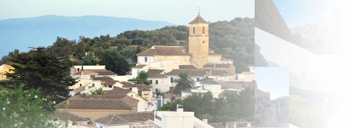 Foto de Pinos del Valle