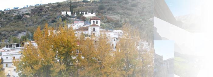 Foto de Torvizcón