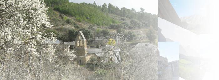 Foto de San Miguel de Arganza