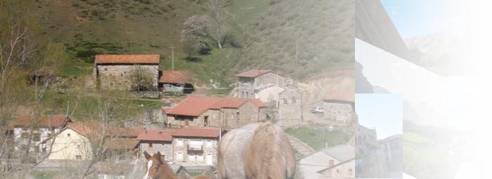 Foto de Vegacerneja
