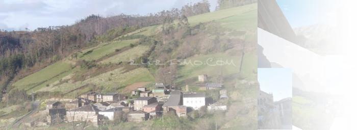 Foto de Figueirua
