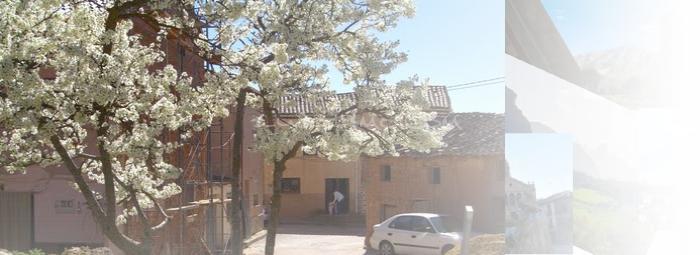 Foto de Quintanilla de Tres Barrios