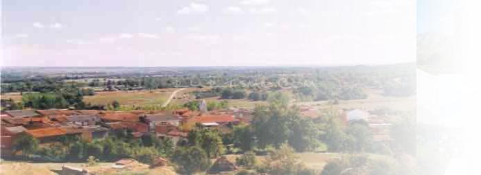 Foto de Congosta