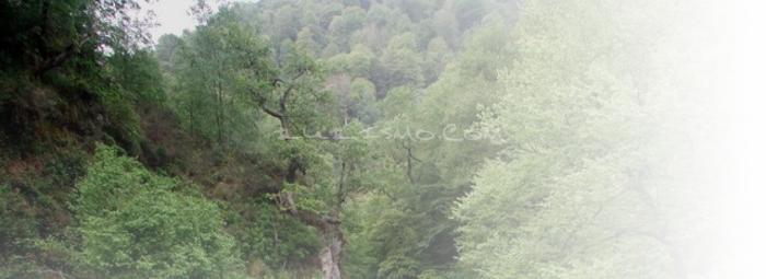 Foto de Valle del Nansa