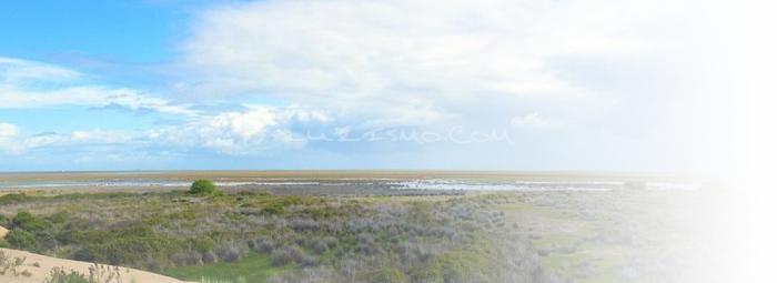 Foto de Las Marismas de Doñana