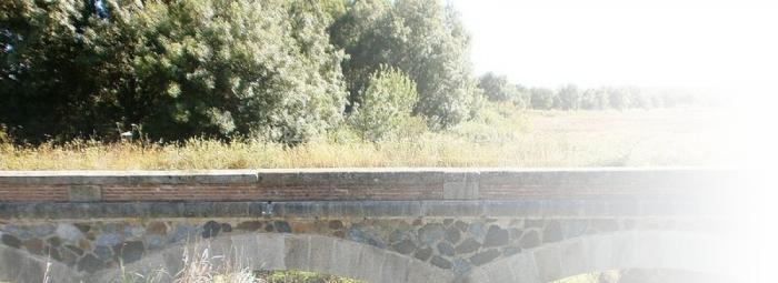 Foto de Sierra de San Pedro