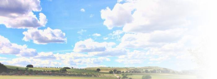 Foto de La alcarria