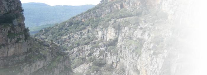 Foto de Sierra de Andújar