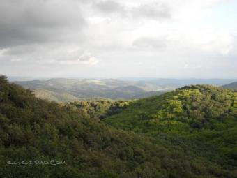 Parque Natural de la Sierra Norte Sevillana