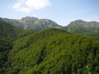 El Parque Natural de Saja Besaya